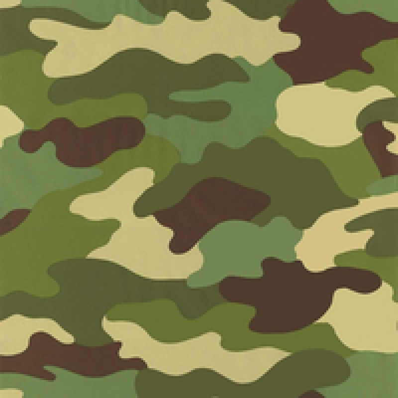 Home Kids Club Camouflage Green Wallpaper by Rasch 222821 800x800