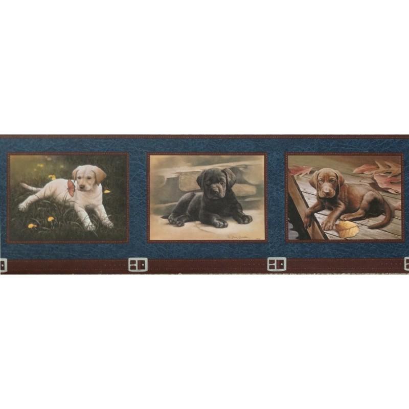 Wallpaper Border Animals Nature Framed Labrador Puppies Border 800x800