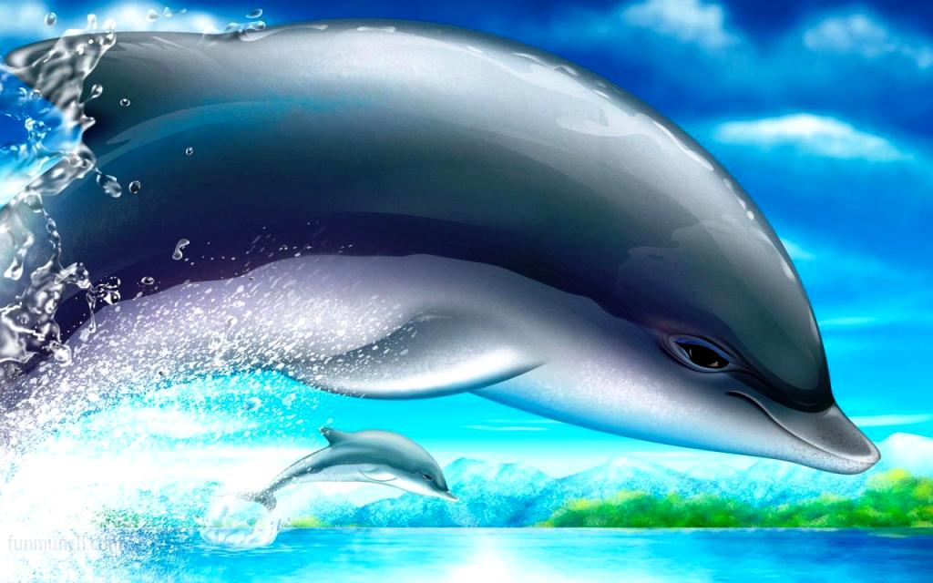 Dolphins Wallpaper 3d 3d Wallpapers Dolphins 1024x640