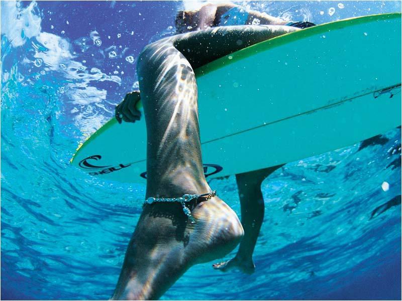 Download Beautiful wallpaper longboard surfing wallpaper 800x600