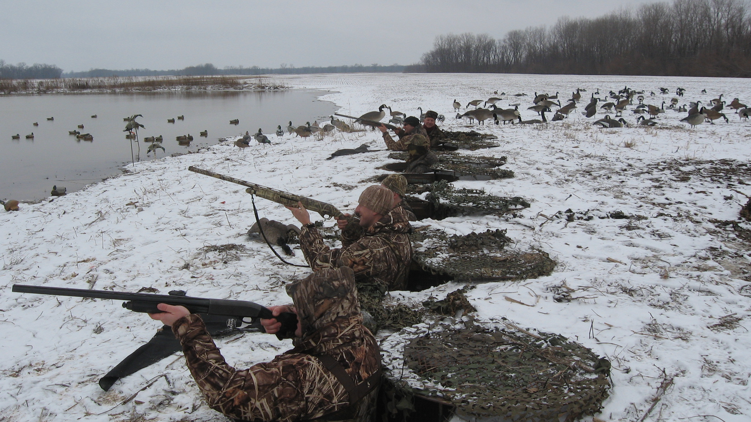 Goose Hunting Wallpapers Duck hunting b cake ideas and 2592x1456