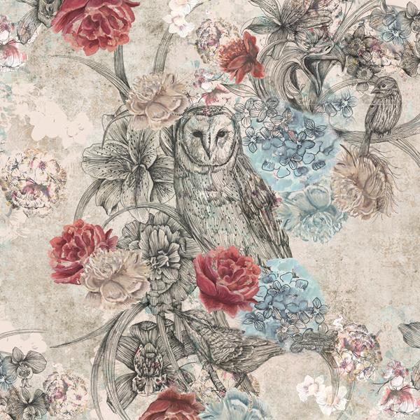 of prey birdsong peacock owl wallpaper kingfisher wallpaper floral. B Q Wallpapers   WallpaperSafari