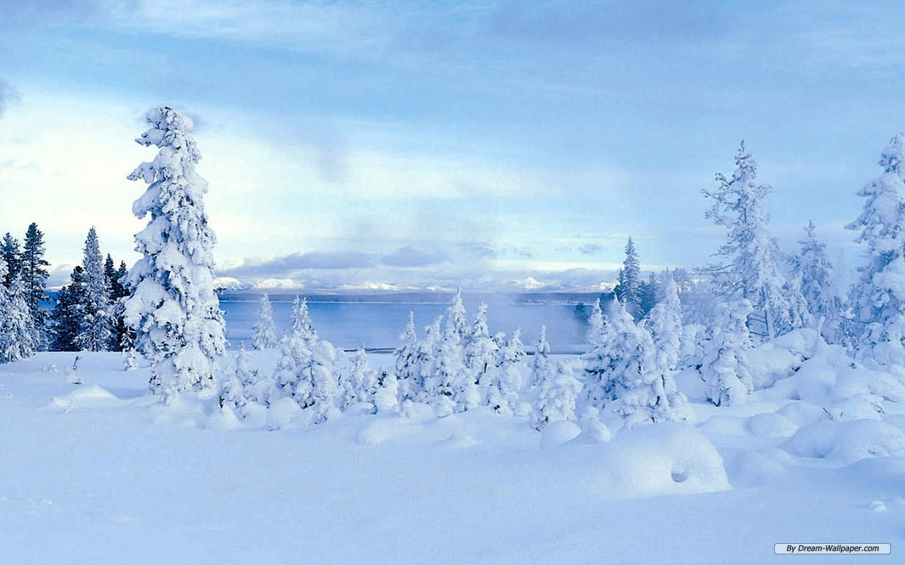 free winter wonderland wallpaper wallpapersafari