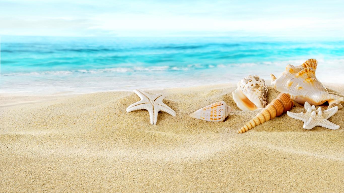 обои для рабочего стола морской песок № 833511 без смс