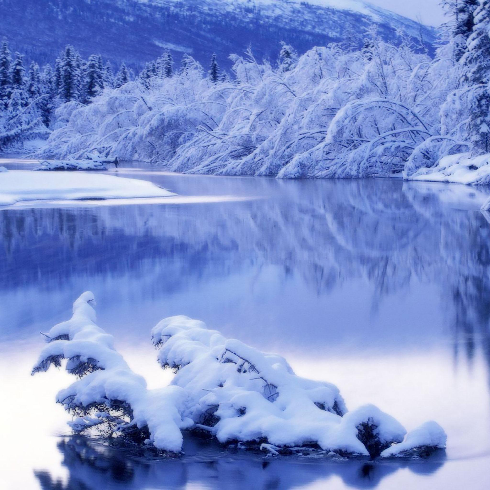 соприкоснемся картинки зима самсунг приятным бонусом будет