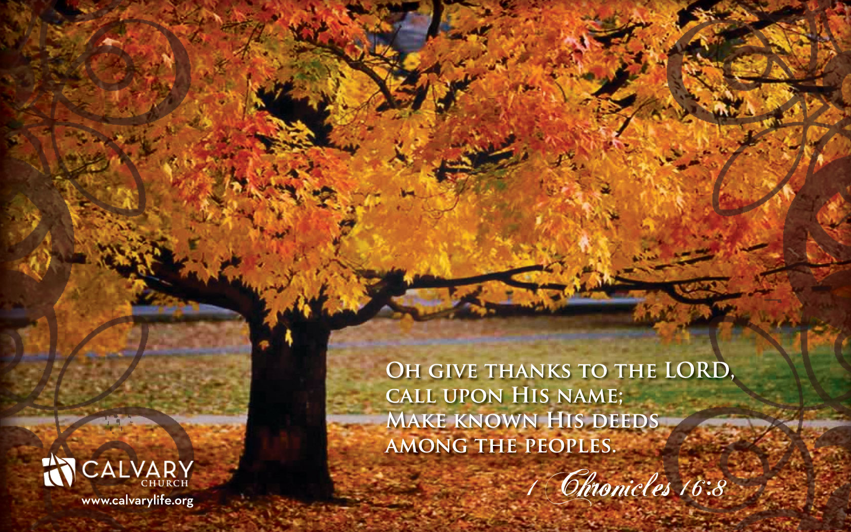 Download Thanksgiving Wallpaper Backgrounds 48   Wallpaper 1680x1050