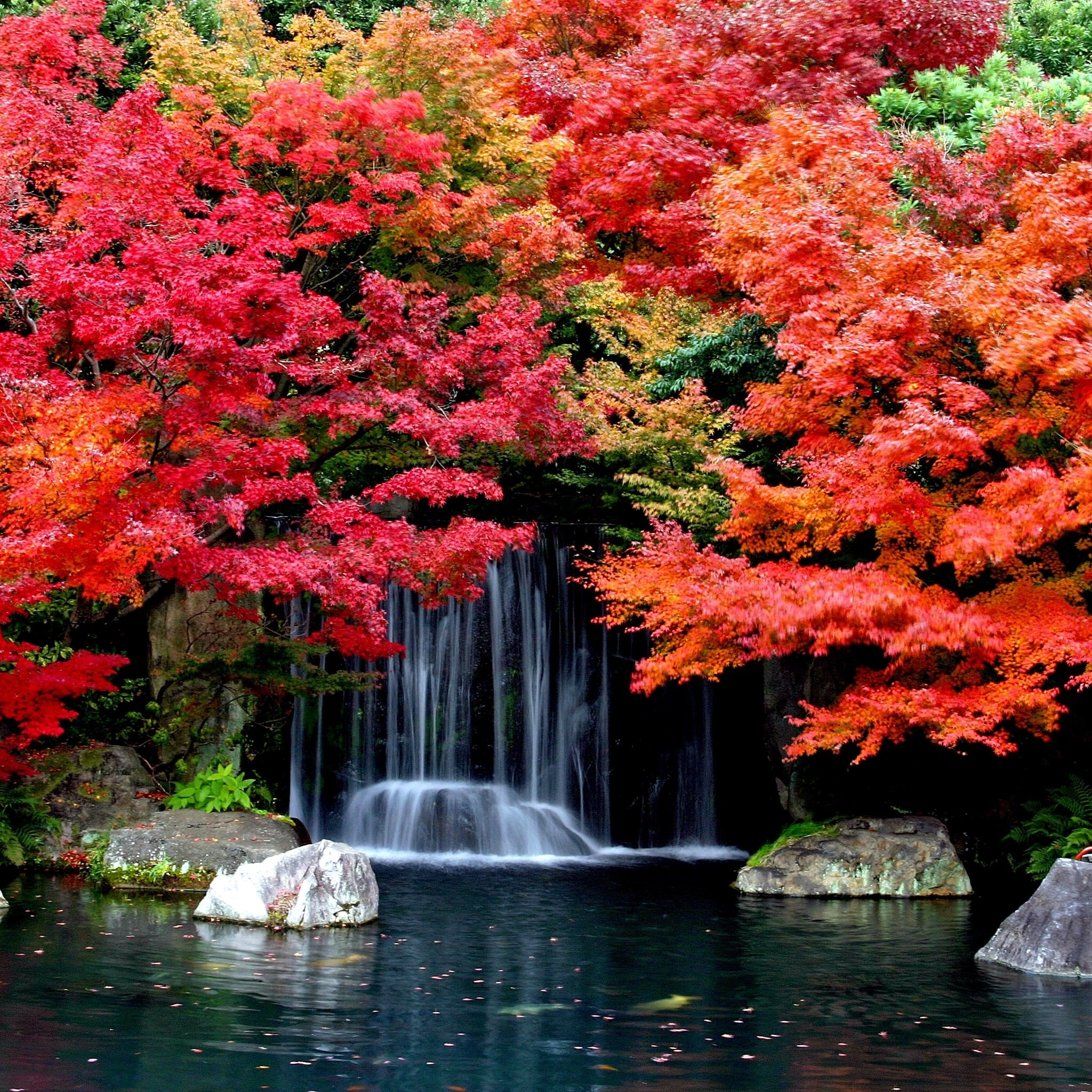 Cool Wallpapers with Autumn Leaves and Waterfall for iPad Air Retina 2048x2048