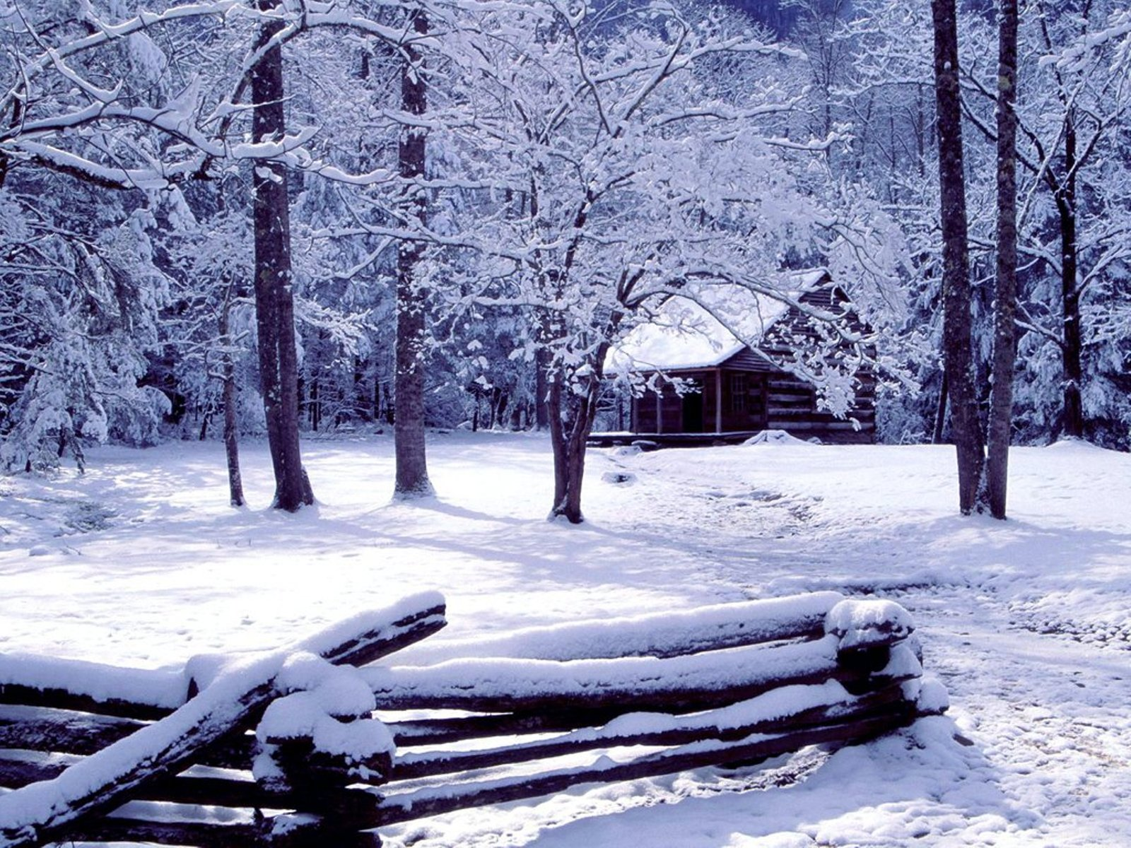 Wallpapers Winter Scenery 1600x1200