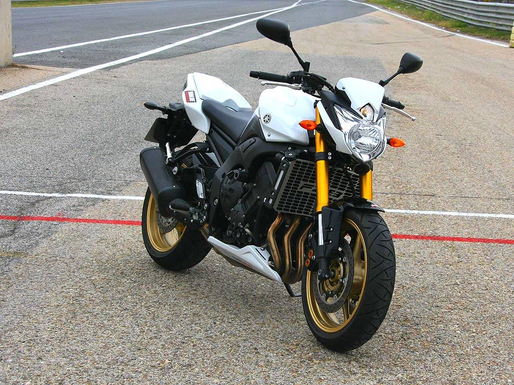 Yamaha FZ8 1024x768