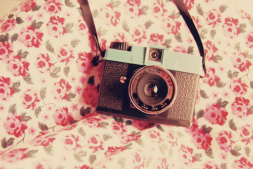 TUMBLR] Vintage camera Flickr   Photo Sharing 500x334