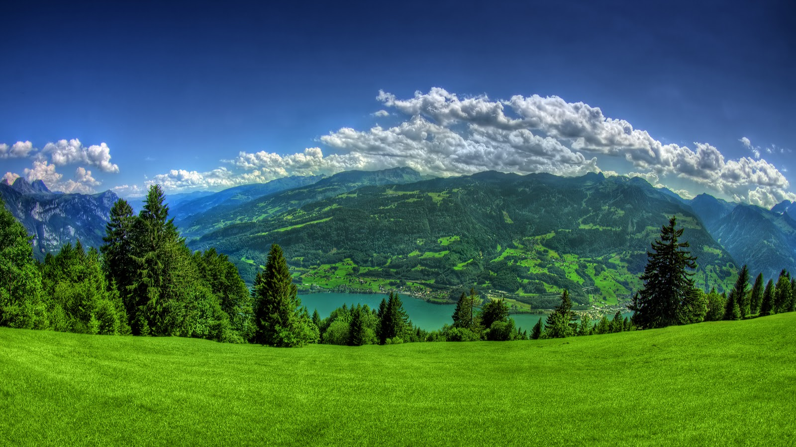 high quality mountain above clouds green forest river Wallpapers 1600x900