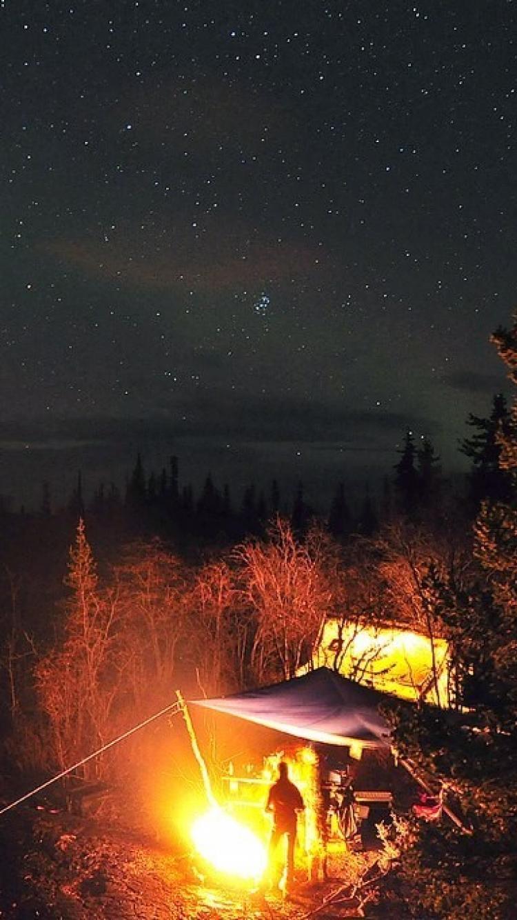 Trees stars fire tents camping tent wallpaper 58080 750x1334