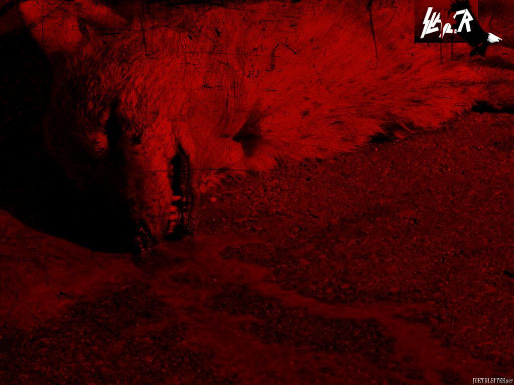 Slayer   Wallpaper 3612 METALSITESnet 1024x768