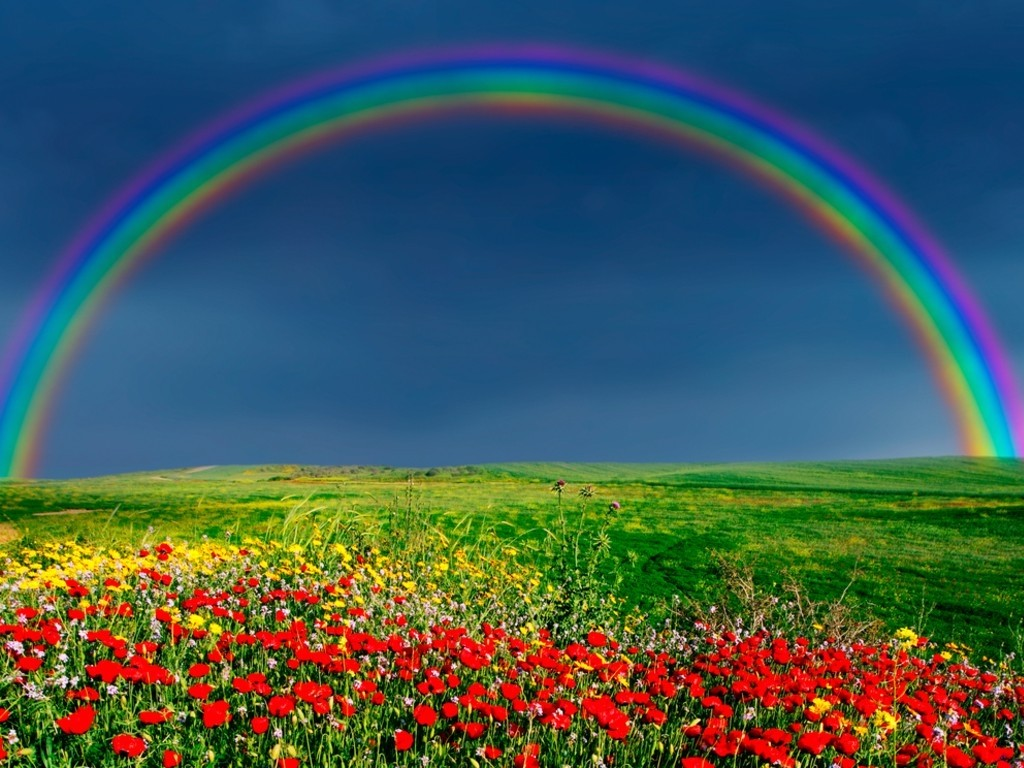 Rainbow Wallpaper - WallpaperSafari