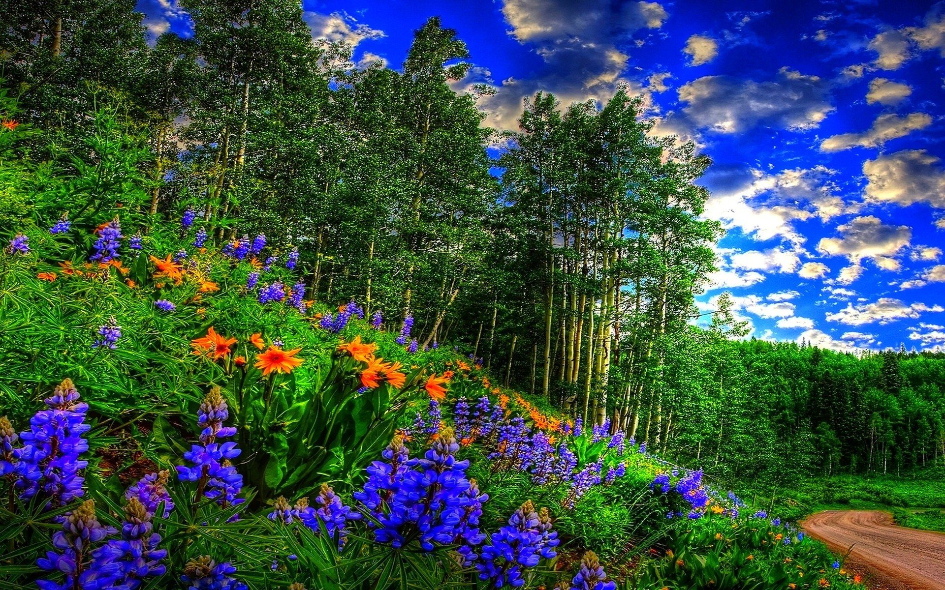 83 Springtime Desktop Wallpapers on WallpaperPlay 1920x1200