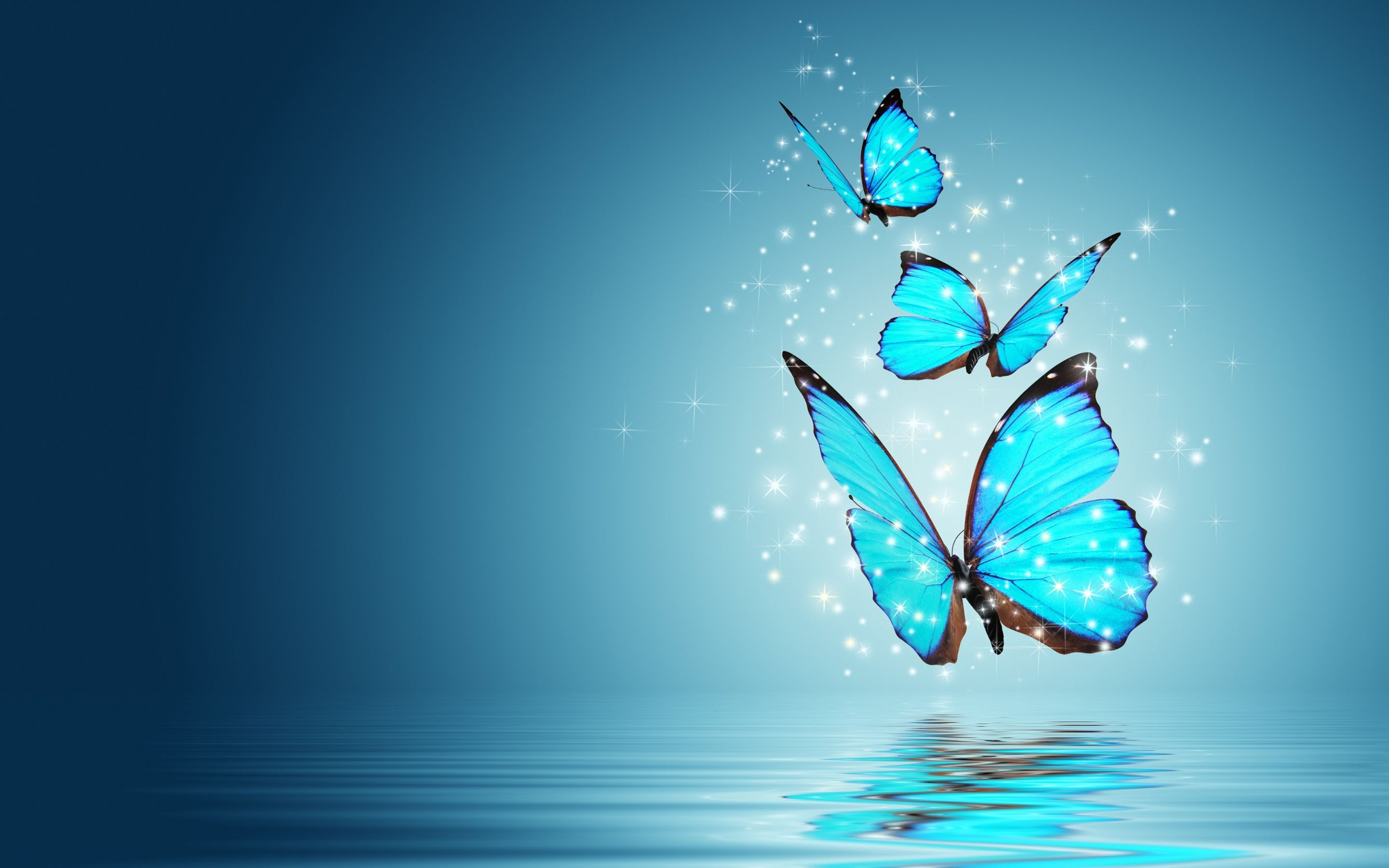 Blue Butterfly Water Reflection The best wallpaper backgrounds 2880x1800