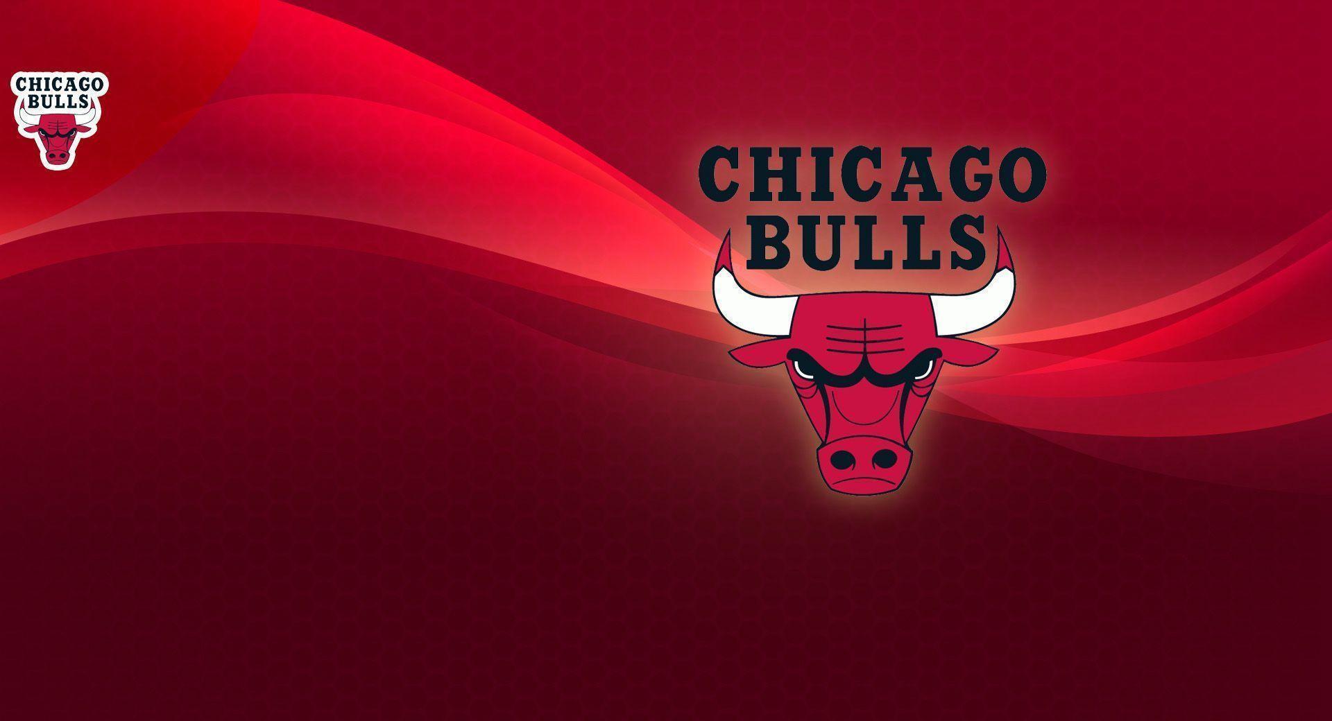 Chicago Bulls Wallpapers HD 2015 1920x1040