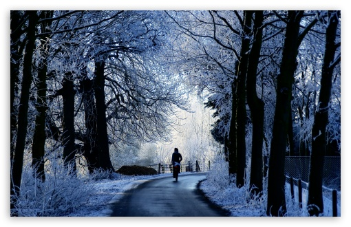 Winter Road Scene HD desktop wallpaper Widescreen High Definition 510x330