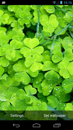 Download Lucky Clover Live Wallpaper apps for Android phone 288x512