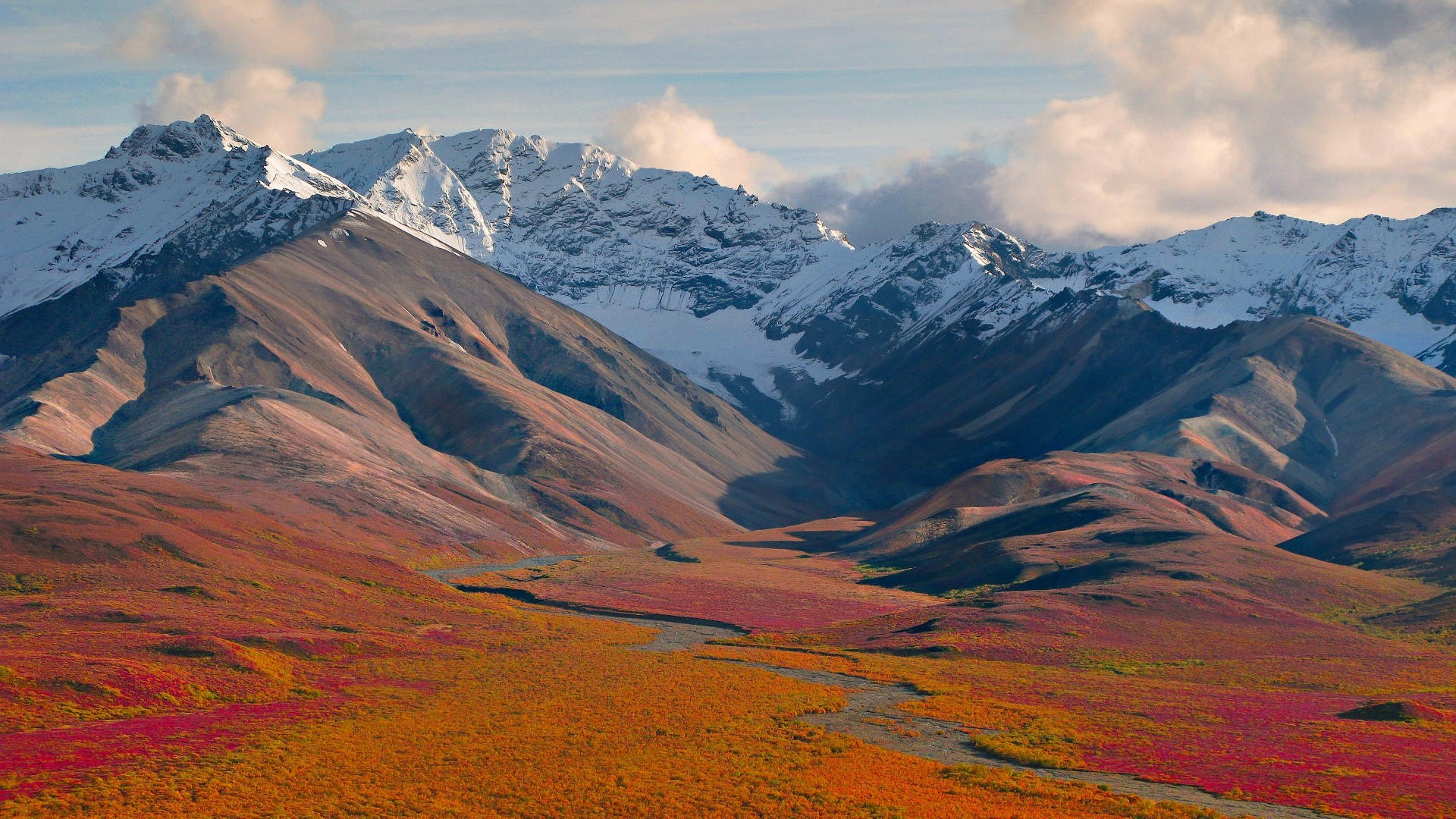 Denali National Park Mountain View in Alaska United States Wallpaper 1920x1080