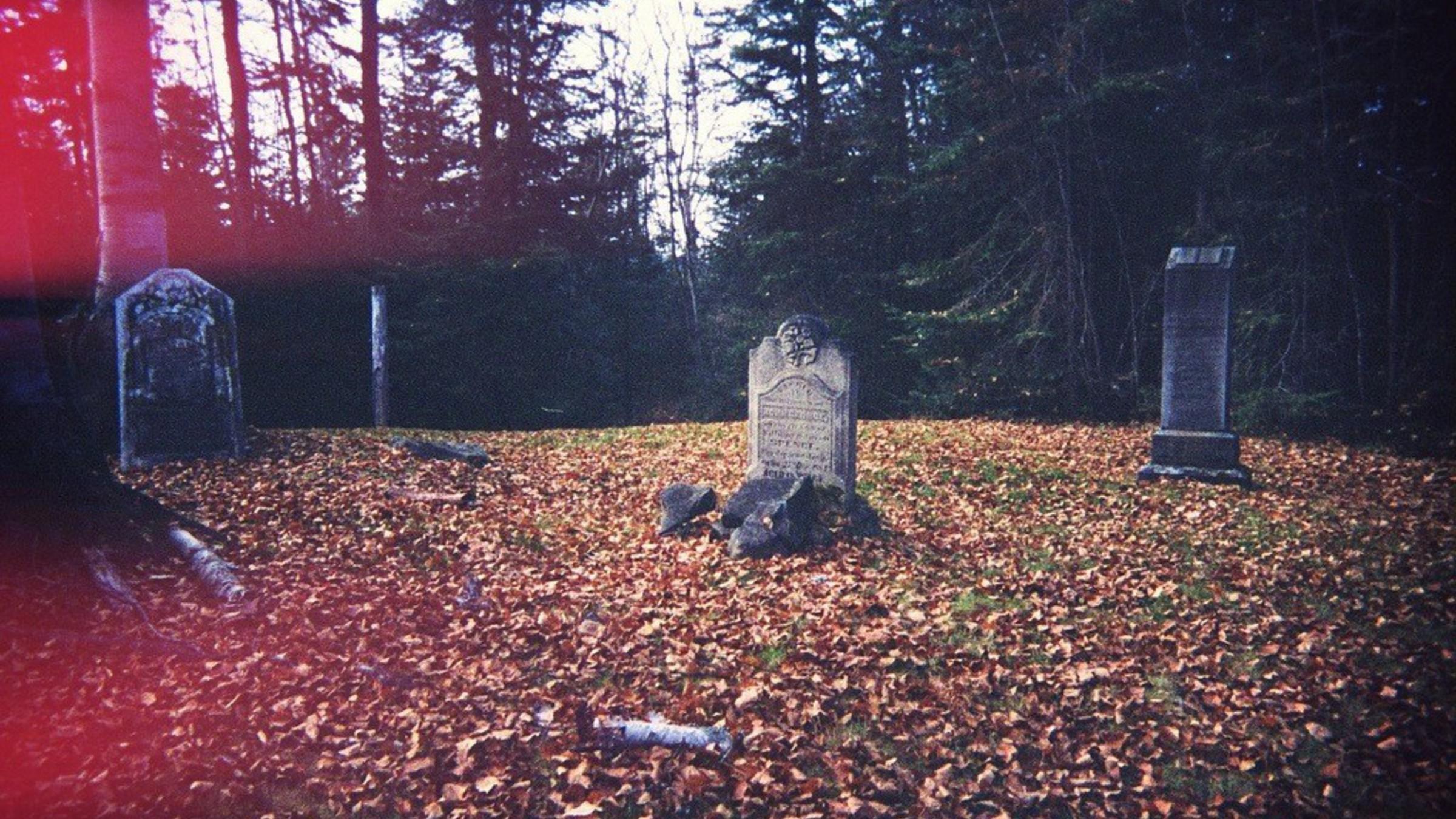 Autumn Leaves Graves Cemetery Fallen Headstone Wallpaper 2400x1350