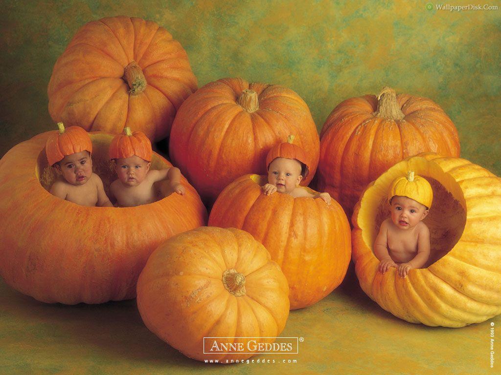 Best cute kids desktop wallpapers background collection 1024x768
