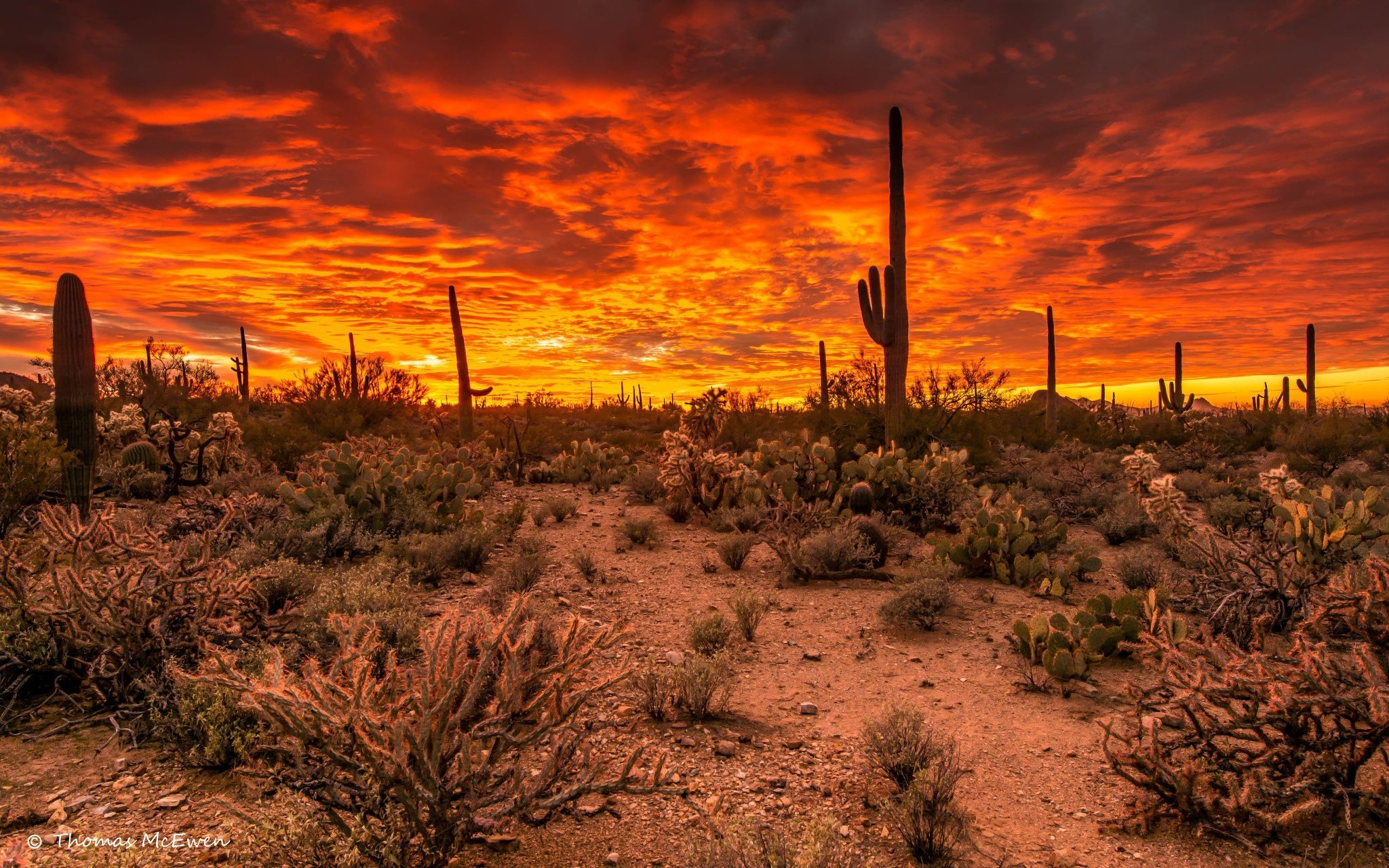 40 Sunset in Tucson AZ Wallpapers   Download at WallpaperBro 2048x1280