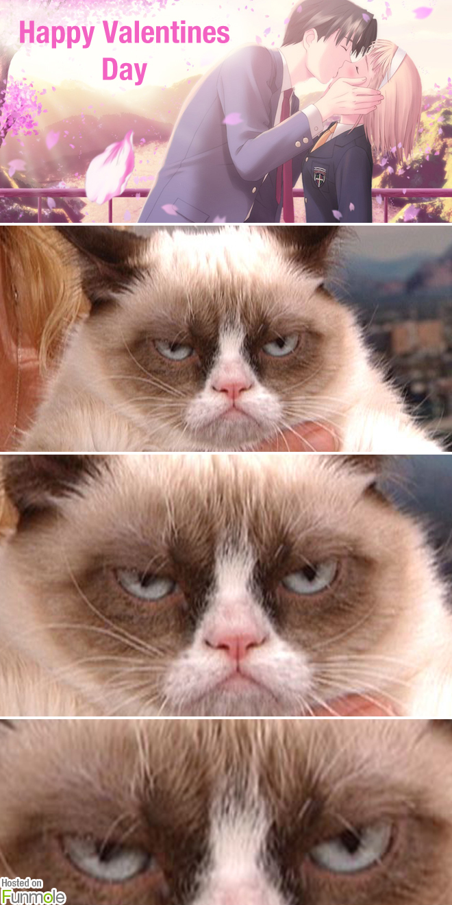 Grumpy Cat hates Valentines Day Funmole 660x1320