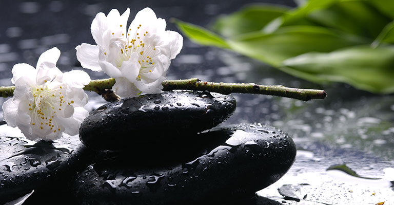 Asian Zen Wallpaper Theme for Spa Home Walls Decor 768x399