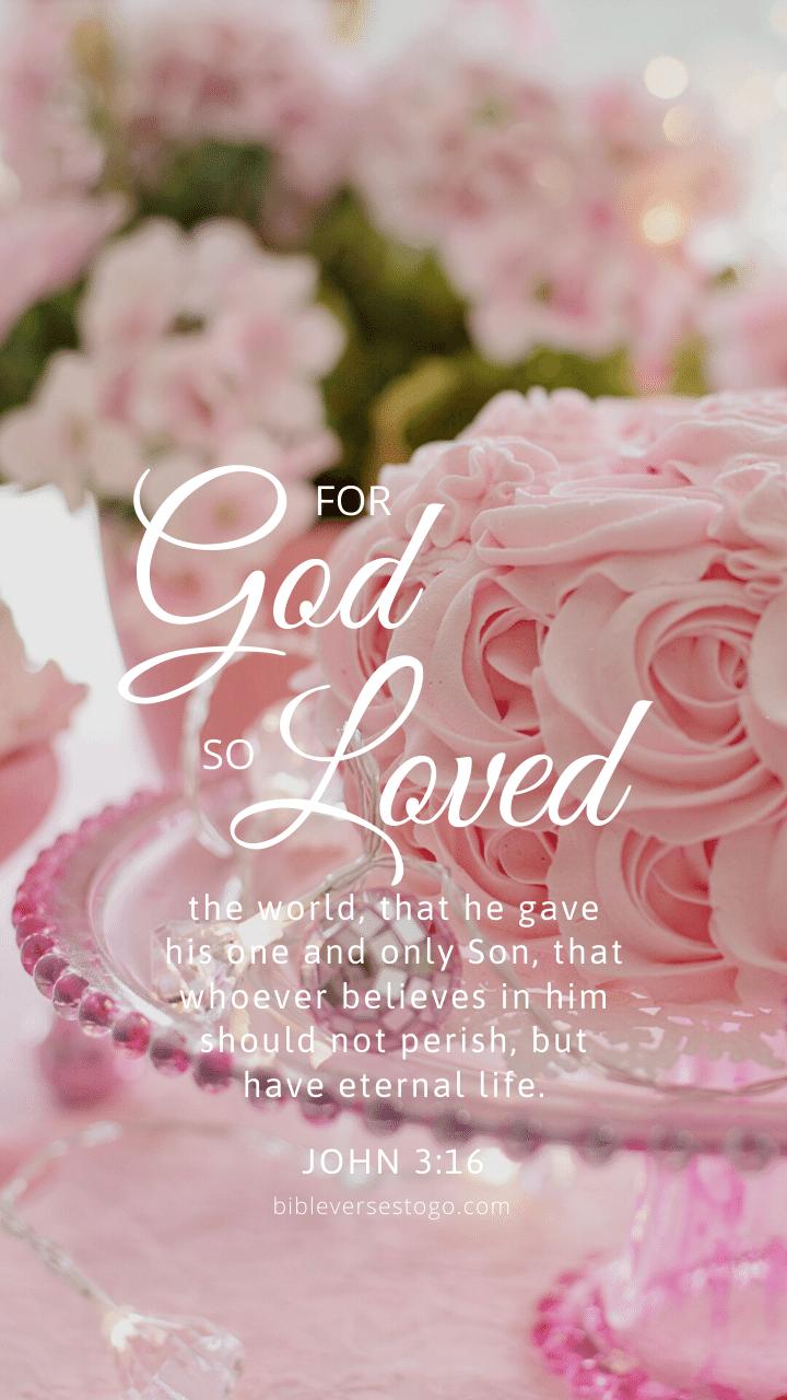 Soft Pink John 316 Bible Verses To Go 720x1280