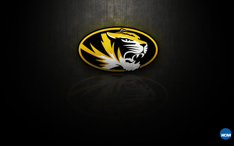 mizzou wallpaper 900x563