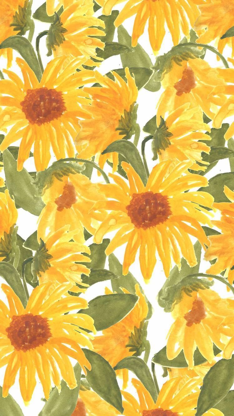 Sunflowers iPhone Wallpapers   Top Sunflowers iPhone 750x1334