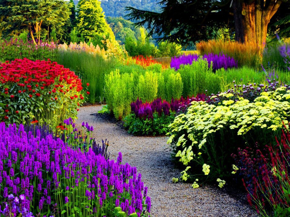 images of beautiful garden