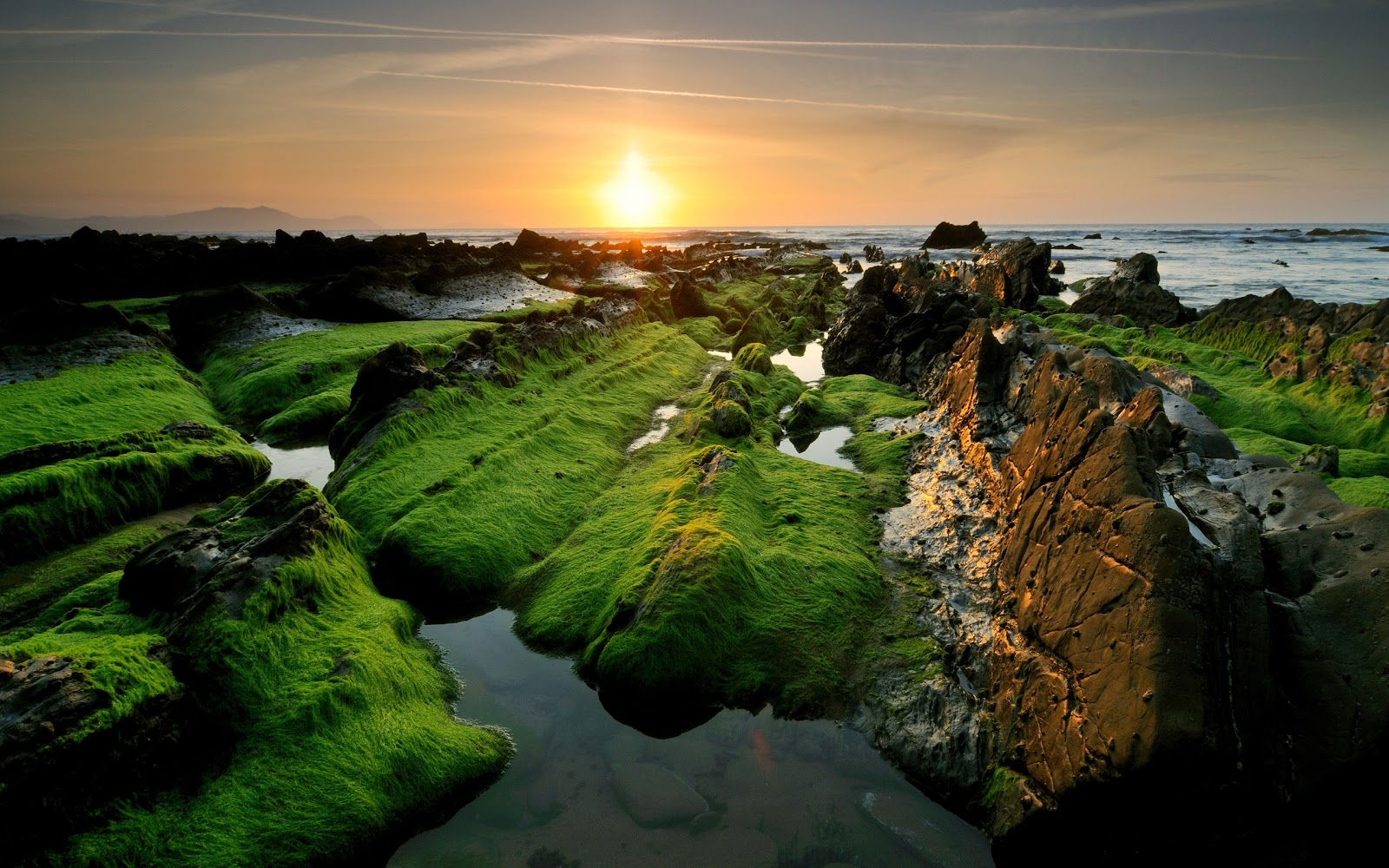 Amazing Nature HD Wallpapers 2012 2013 1600x1000