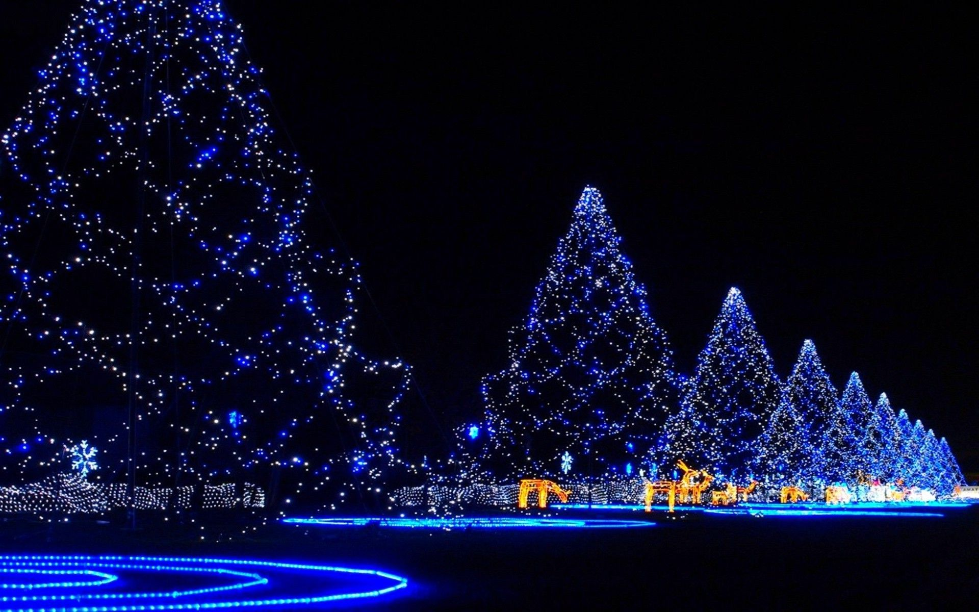 Christmas Lights Backgrounds 1920x1200