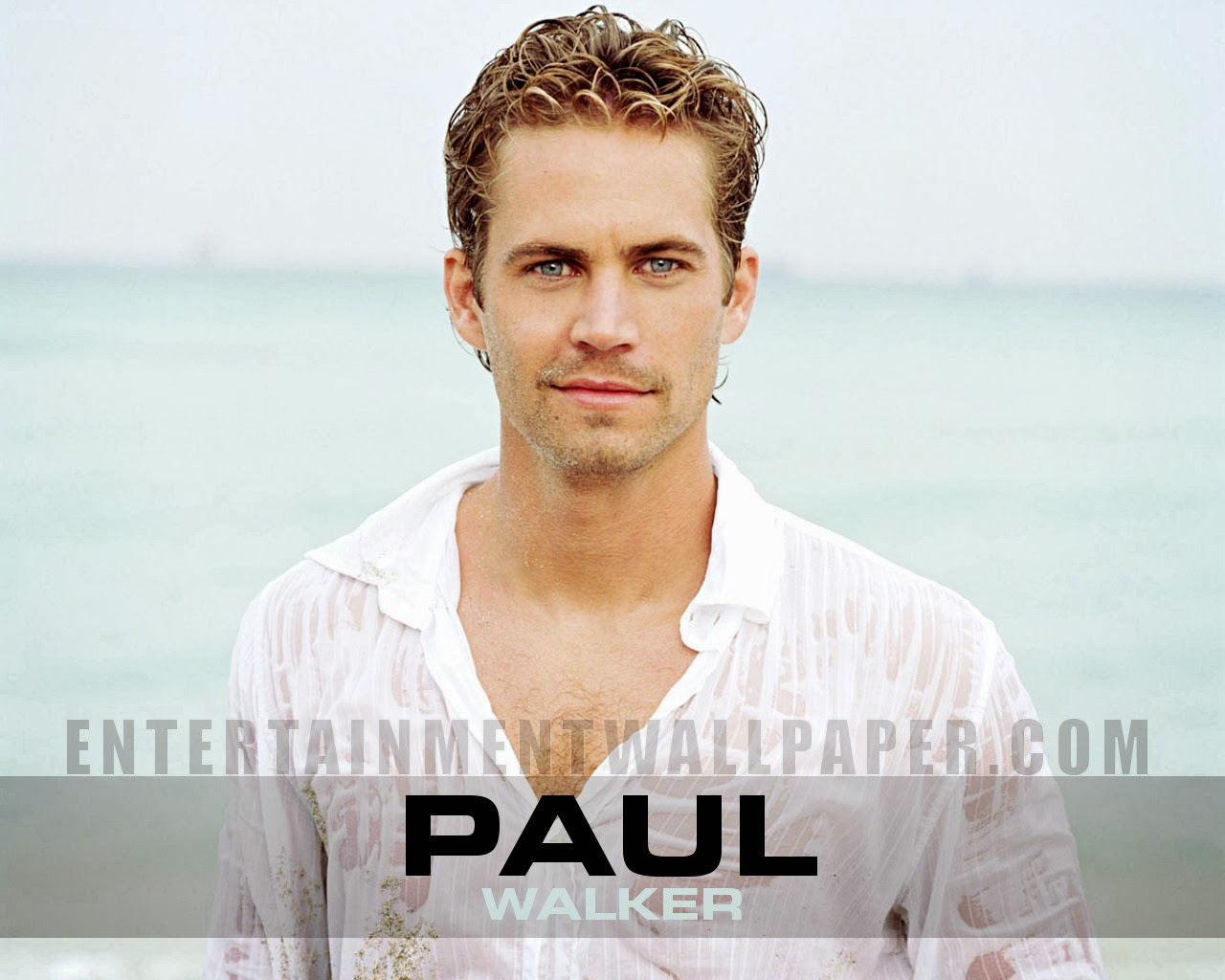 Paul Walker HD Wallpaper Wallpapers Blog 1280x1024