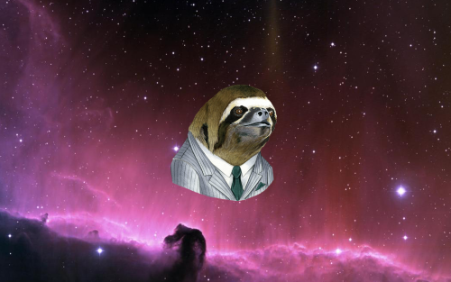 slothstronaut on Tumblr 500x313