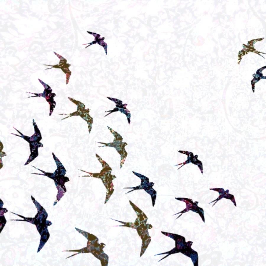 Bird Pattern Wallpaper Birds Vintage Wallpaper 900x900