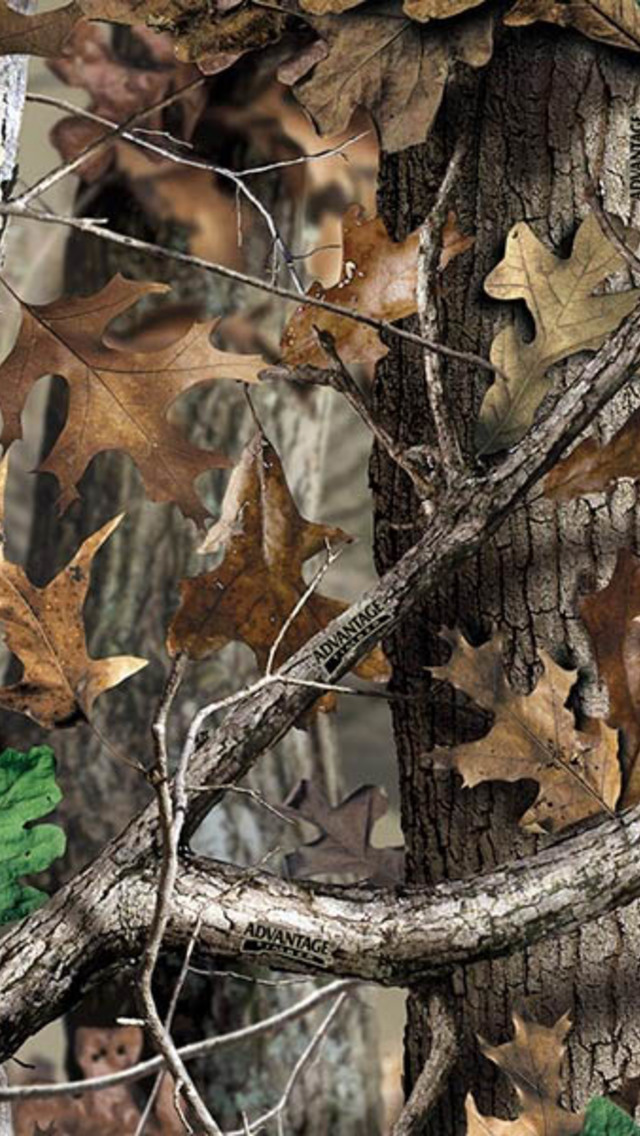 Realtree Camo Pattern Wallpaper for iPhone 5 640x1136