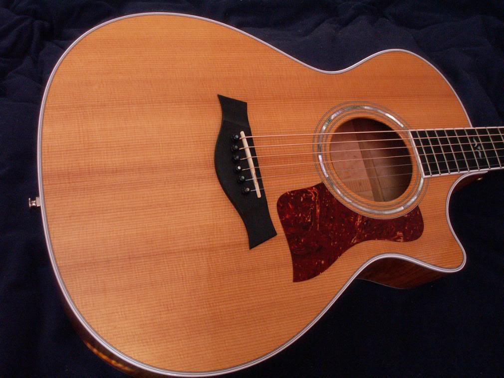 taylor guitars wallpapers - photo #18