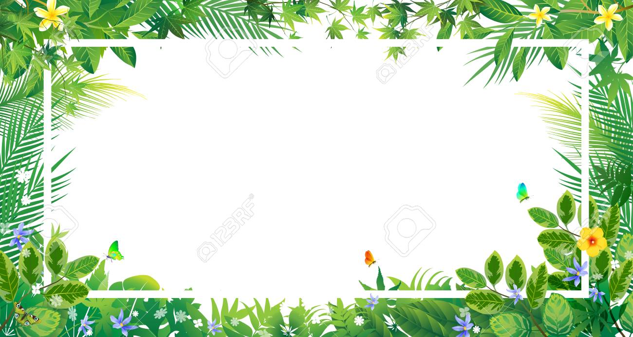 Exotic Tropical Leaf And Flower Border Background For Invitation 1300x692