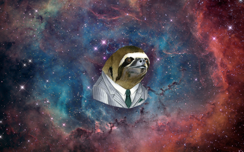 slothstronaut Tumblr 500x313
