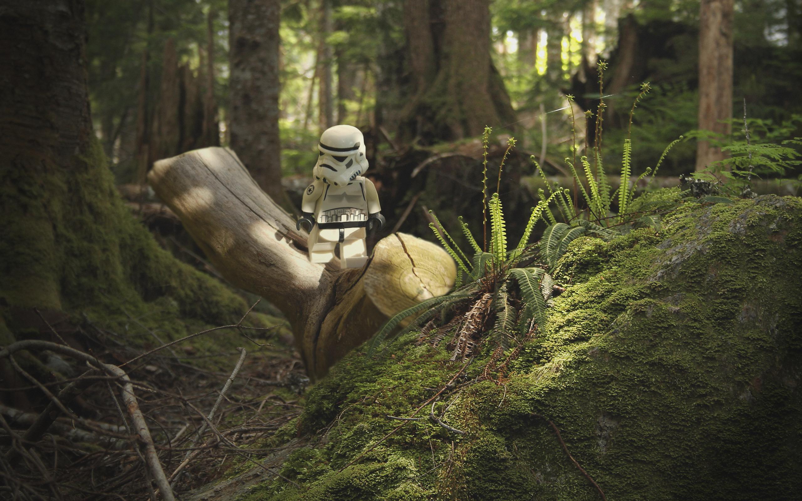 Free Download Stormtrooper Endor By Kveldsvanger 2560x1600 For