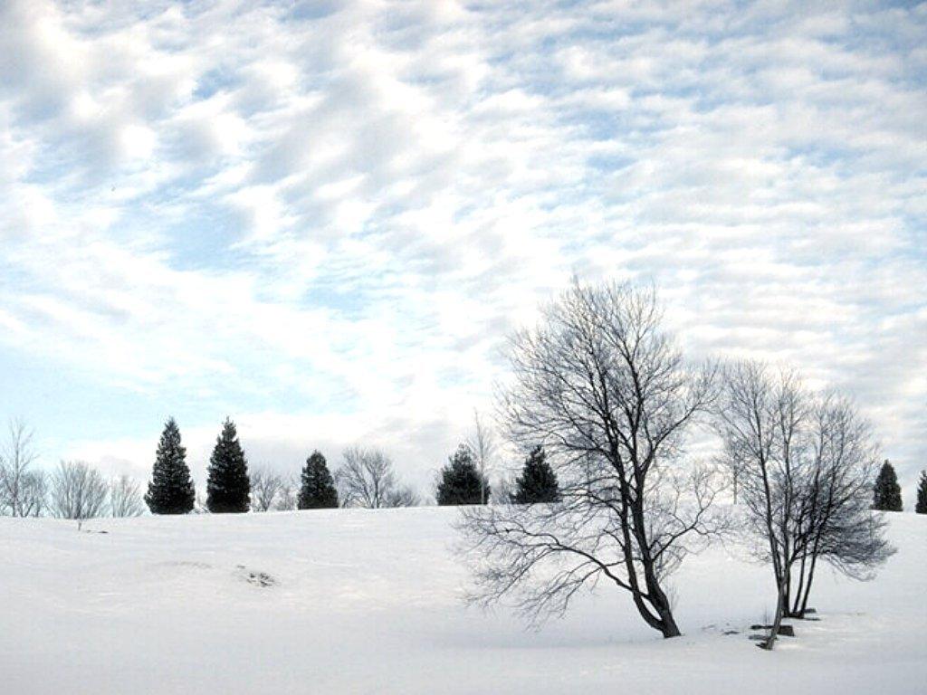 Winter wallpapers   Winter Wallpaper 2768528 1024x768