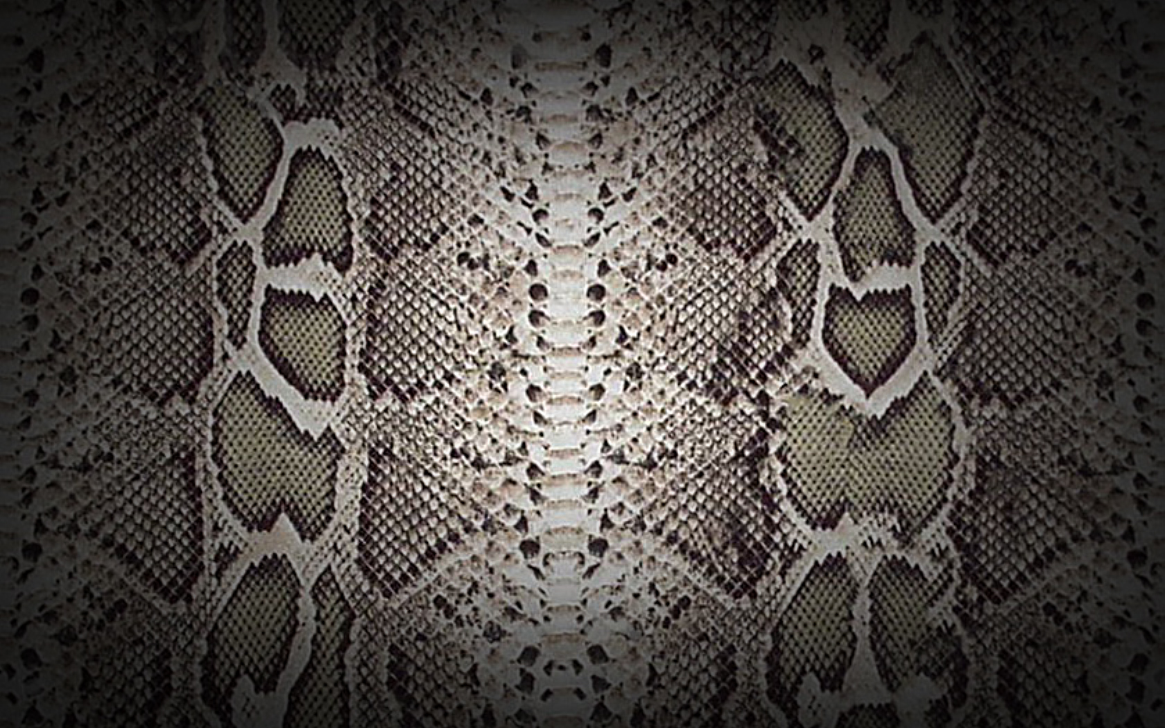 textures snake skin wide by loo lee customization wallpaper abstract 1680x1050