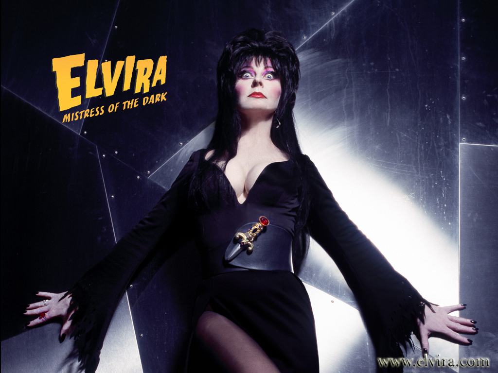 Elvira images Elvira HD wallpaper and background photos 1024x768