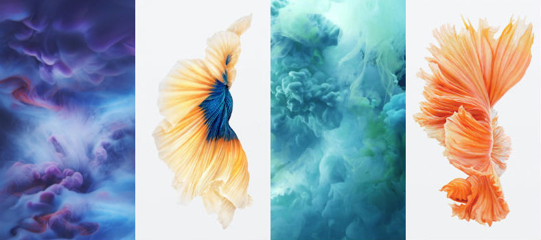 iPhone 6s official Live Photos Dynamic Wallpapers iPhone 6s 788x350