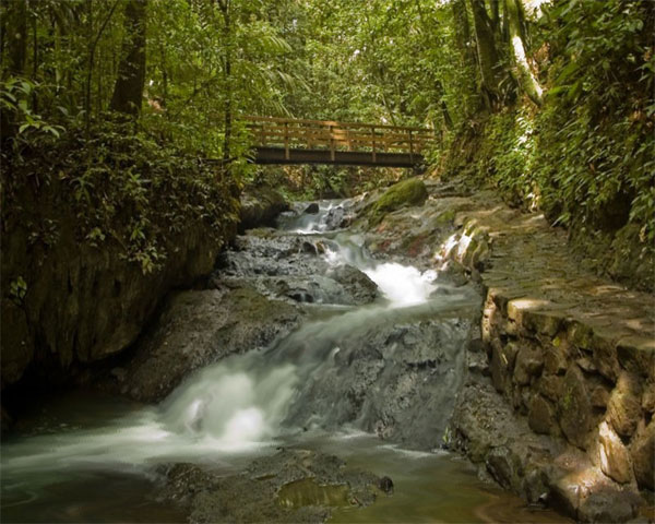 Windows Vista ThemesWaterfall Screensaver Download 600x480