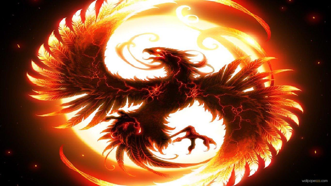 Download Dragon HD Wallpaper Wallpaper 1366x768
