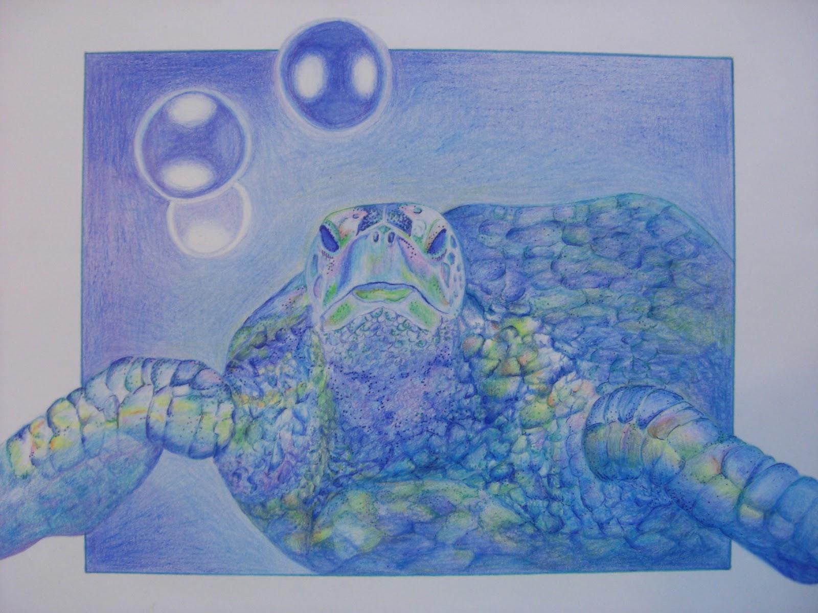 Ocean Themed Wallpaper Borders 1600x1200